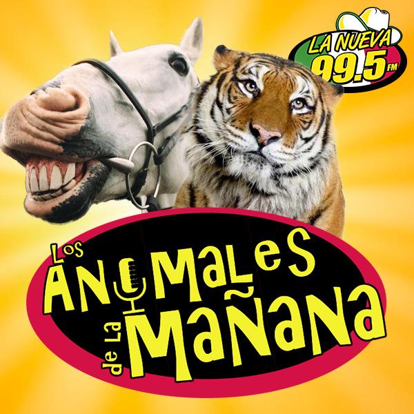 ontheair_kkps_animales
